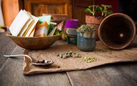 Что нужно учесть при покупке семян