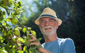 Советы опытных садоводов: культуры для «сложного» участка