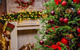 Самые оригинальные новогодние елки