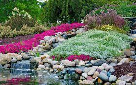 Каменистые сады: альпинарий и рокарий