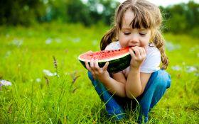 Как правильно сажать арбузы: коротко о главном