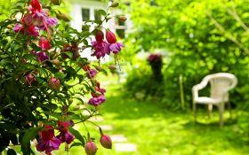 7 простых способов усовершенствовать сад