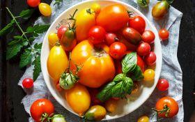 Лучшие и проверенные сорта томатов. Обзор