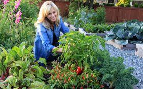 Контейнерные грядки: большие перспективы маленького огорода
