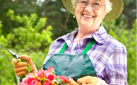 Выращиваем рассаду однолетних цветов: все тонкости технологии
