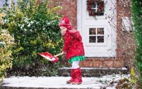 ТОП-6 важных агромероприятий декабря для садоводов