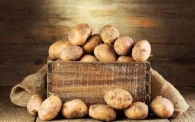 Как сохранить картофель до весны