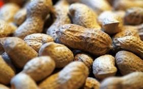 Земляной орех в нашем меню: в чем его польза?