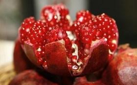 Сад из рубинового зернышка: размножаем гранат