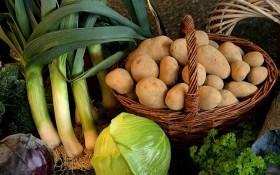 Огородники в ноябре: день за днем