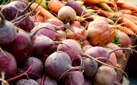 Домашнее семеноводство: размножаем двухлетние овощные культуры