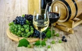 Стойкие виноградные солдаты: сорта для виноделия