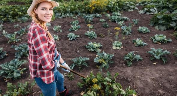 Тяпка всемогущая: как усовершенствовать садовый инструмент своими руками