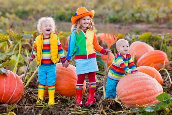 Дети осень поле тыквы уборка урожая