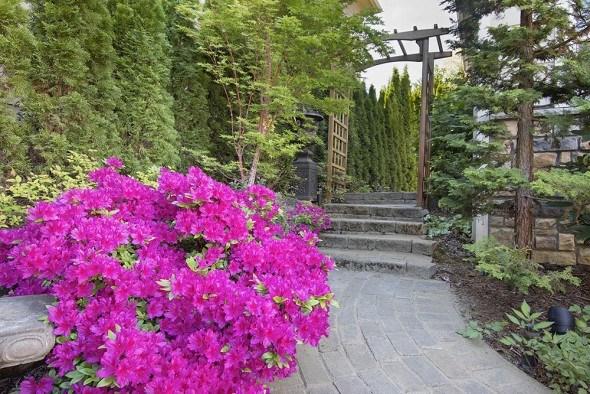 Как использовать листопадные азалии в дизайне сада?