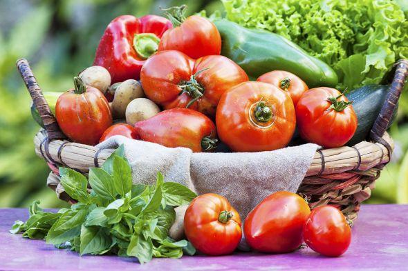 Средства защиты растений для органического земледелия