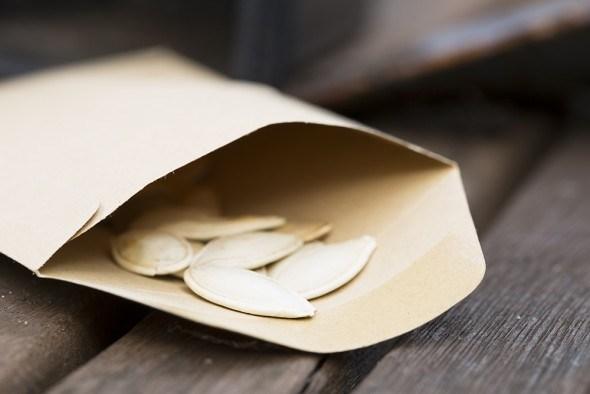 Семена тыквы пакет