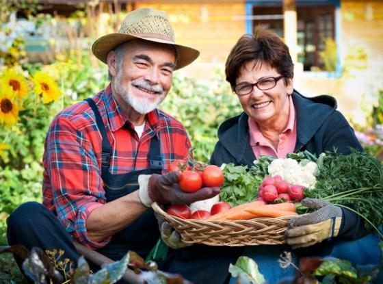 Огородники мужчина, женщина урожай