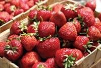 Свежие ягоды круглый год