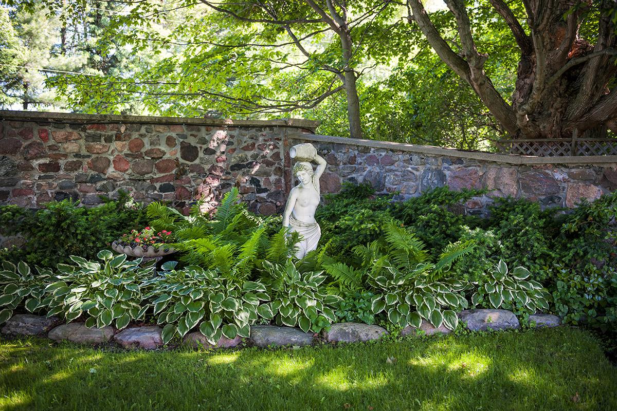 Цветы для теневого сада