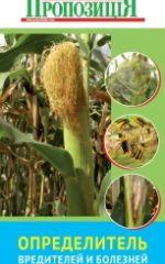 Описано морфологические особенности и диагностические внешние признаки болезней на кукурузе.