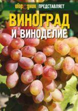 Технология выращивания винограда и виноделие