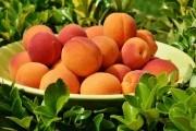 Пищевые и лечебные свойства плодов косточковых культур