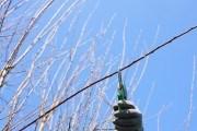 """Готовим """"телегу"""" зимой: инструменты, необходимые садоводу"""