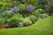 ТОП-7 рекомендаций от опытного цветовода по созданию красивого цветника