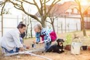 Мужчина, женщина и собака работают на грядках