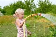 Когда и как правильно поливать ягодные культуры