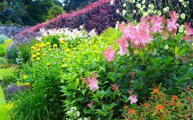 Виды цветников: формы, наполнение, отличия