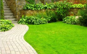 Правильный уход за газоном — идеальный зеленый газон