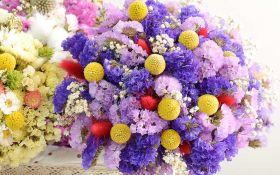 Цветение вне сезона: выращиваем сухоцветы в саду