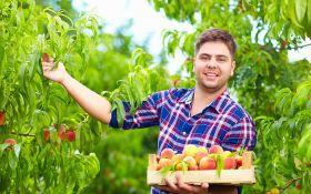 Персики, которых не страшат морозы