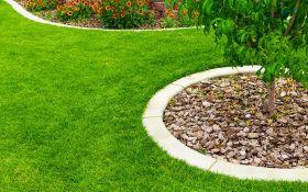 Как вернуть газону эстетическую привлекательность?