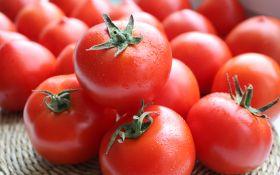 Крупноплодные сорта томатов, которые удивят вас своими размерами