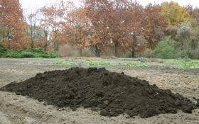 Как улучшить песчаную почву  — обогащение