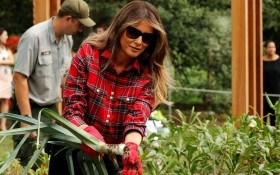 Мелания Трамп посадила овощи в Белом Доме