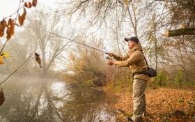 Как козаки рыбу ловили
