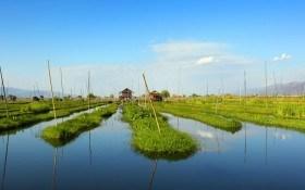 Огороды на воде: Мьянма, Мексика и Украина
