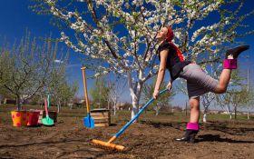 Что нужно сделать в апреле в огороде