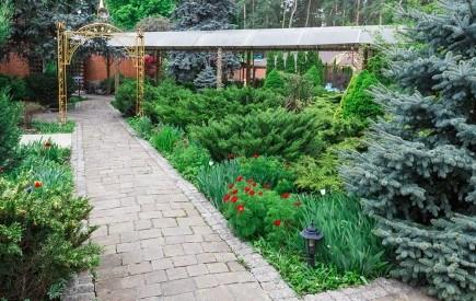 Как использовать хвойные с разным типом кроны в дизайне сада?