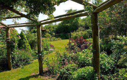 Как использовать древесину в оформлении сада?