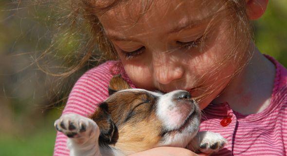 Щенки и дети: инструкция к мирному общению