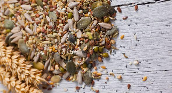 Как получить чистые семена со своего огорода