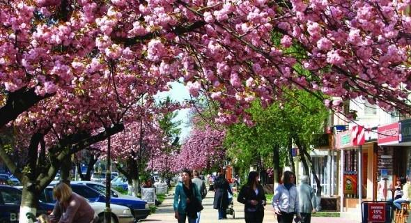 Куда поехать на майские: ТОП-национальных развлечений