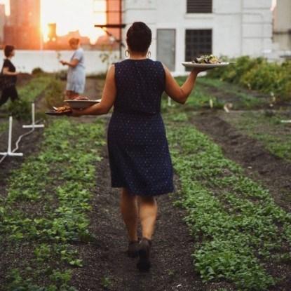 Женщина несет угощение в Brooklyn Grange