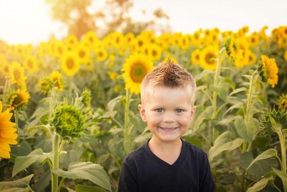 Желтый цвет: дарит радость и снимает напряжение