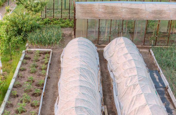 """""""Теплые"""" грядки — простой и доступный способ получения раннего урожая"""